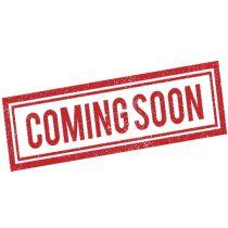 REEBOK QQR STACKED Férfi póló kék
